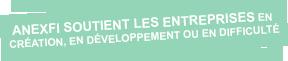 anexfi soutient les entreprises en création, en développement ou en difficulté